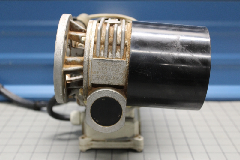 P10020-06